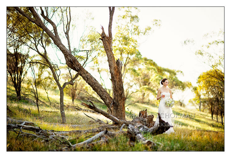 bride by a tree in the country in perth